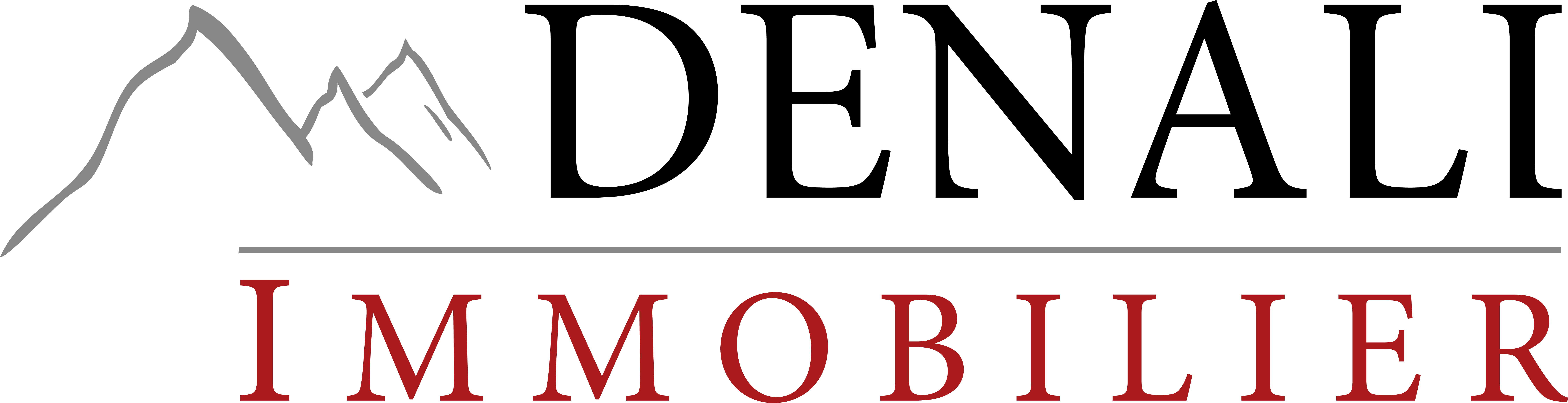 Denali Immobilier logo